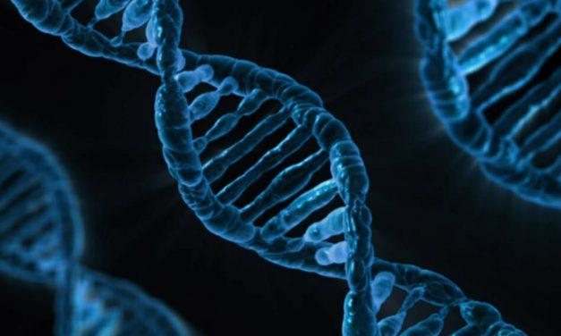 Epigenètica i societat