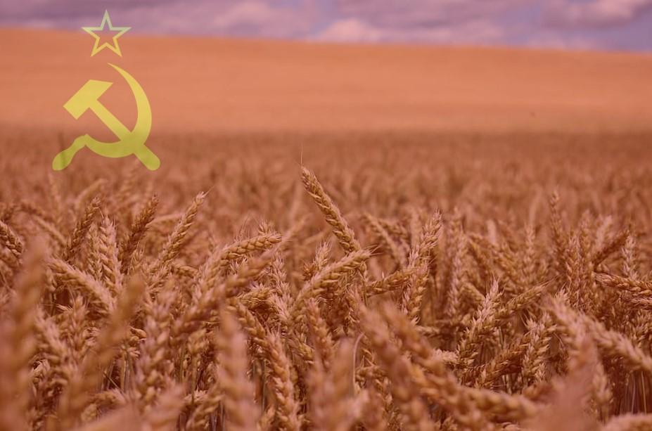 """La genètica a l'URSS i les al·lopoliploïdies<span class=""""wtr-time-wrap block after-title""""><span class=""""wtr-time-number"""">6</span> min de lectura</span>"""