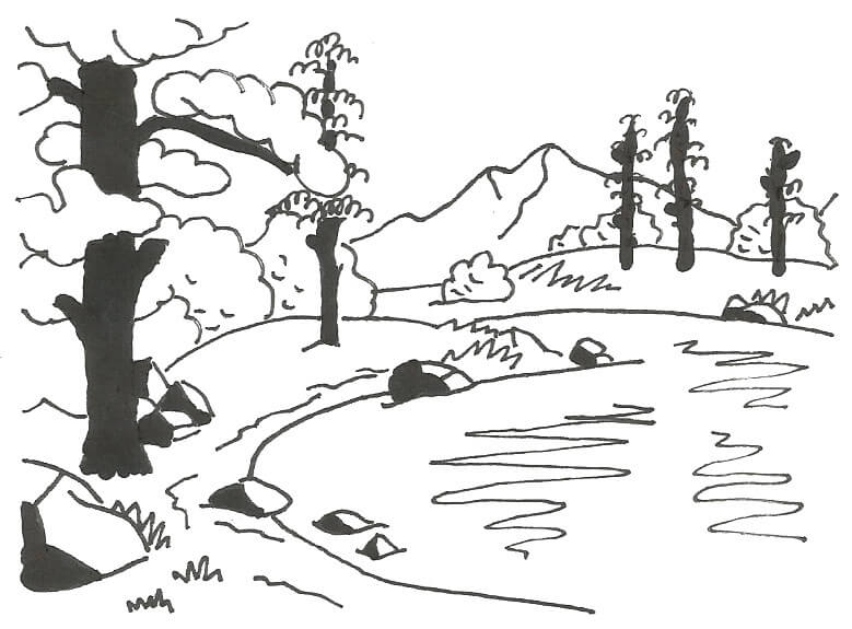 Bosc i llac