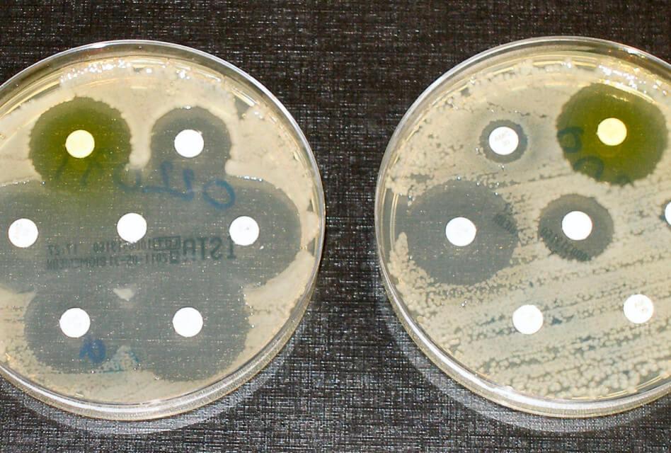 El problema dels antibiòtics