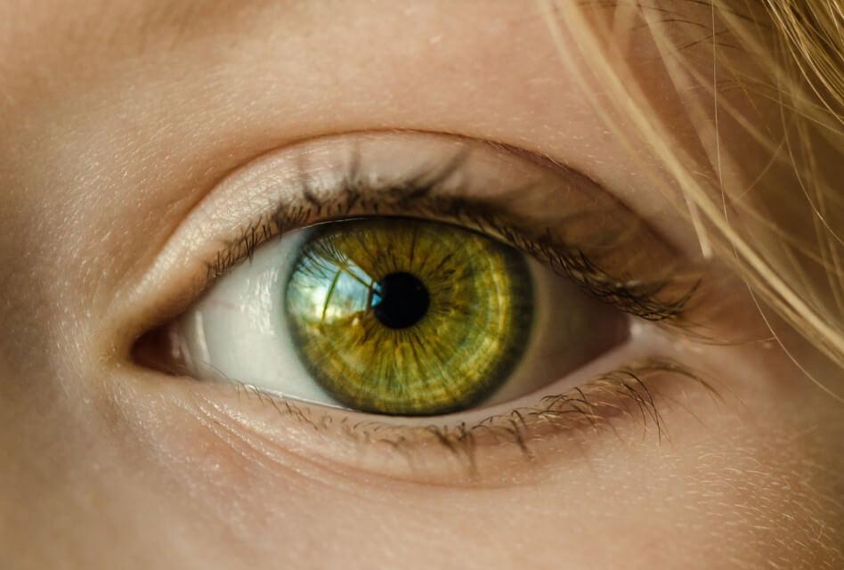 El color d'ulls al descobert