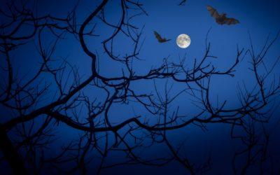 L'origen dels vampirs