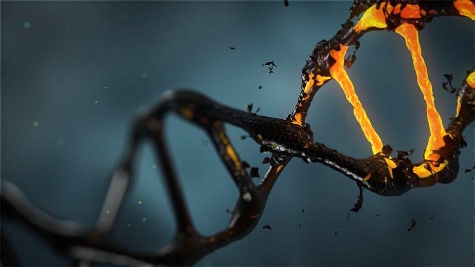 La genètica dirigida